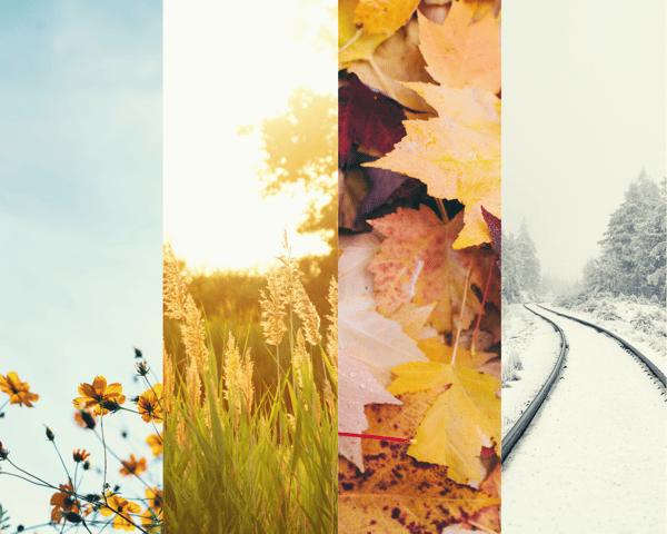 Spring, Summer, Fall, Winter. Fashion Seasons