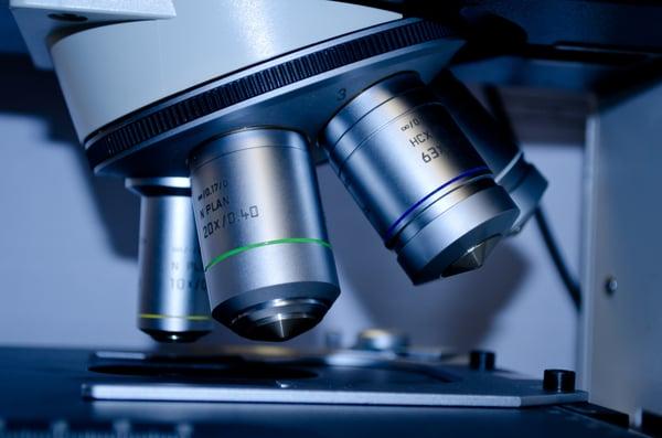 Microscope inspecting slide